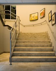 Day 293- Up the stairs . . . (Wishard of Oz) Tags: day293 2015 project365 edition 365the 2015yip 365in2015 28502992 20oct15