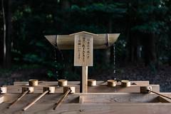 Wash (Evacamillas) Tags: world life travel tree green water japan tokyo hands woods nikon shrine drink religion pray wash meijijingu d7100