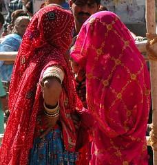Between Two Women - Pushkar, India