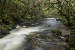 Twists and Twirls (RattyBoots) Tags: autumn canon waterfall dartmoor beautyspot polariser annualpilgrimage canon5diii canon1635f4