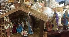 Peace On Earth, Goodwill to All (EDWW day_dae (esteemedhelga)) Tags: santa christmas xmas holiday snow stockings st bells festive reindeer snowflakes snowman globe poinsettia illuminations garland holly scrooge nicholas elf wreath evergreen ornaments angels tinsel icicle manger yule santaclaus mistletoe nutcracker cheer jolly christmastrees happyholidays bethlehem merrychristmas bauble rejoice goodwill partridge elves yuletide caroling holidayseason carolers seasongreetings merrifieldgardencenter edww christchild daydae esteemedhelga jesus hohoho gingerbread wrappingpaper giftgiving joyeuxnoel northpole holidaydecornativity sleighride artificialtree candycane feliznavidadfrostythesnowman kriskringle sleighbells stockingstuffer wisemen twelvedaysofchristmas winterwonderland
