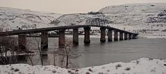 Columbia River Gorge, WA USA (Pritzap) Tags: biggs columbia river gorge columbiarivergorge columbiariver snow bridge oregon