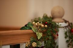 Dec The Halls (Allan Jones Photographer) Tags: decorations christmas christmasdecorations bannisters hall bokeh green leaves allanjonesphotographer canon5d3 canonef85mmf18usm bokehwhores bokehlicious narrowdepthoffield festive xmas
