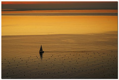 Going home (aviana2) Tags: sea water sunset sailboat sistiana italy fotocompetitionbronze
