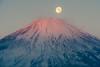 紅富士と月 / BeniFuji and Moon (shinichiro*) Tags: 御殿場市 静岡県 日本 jp 20151227ds22227 2017 crazyshin nikond4s afsnikkor70200mmf28ged fuji pearl gotenba shizuoka japan winter december candidate 31506185593