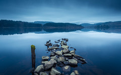 Trophies (rgcxyz35) Tags: lochardcottage scotland trossachs lochside nationalpark reflections lochard lomondtrossachs lochs rocks