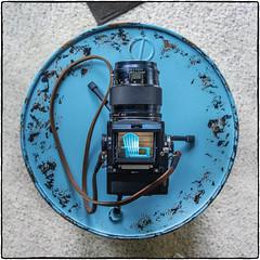 TtV ETR Blue Chair (NoJuan) Tags: ttv throughtheviewfinder throughthebronica cameraportrait gordystrap blue etr bronica