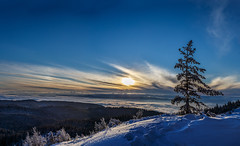 Solitude (coagator) Tags: solitude winter snow frozen tree lonely sky clouds sun sunset mountain zlatar landscape outdoor top fog serbia canon6d