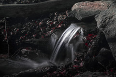 Frankfort Ky. Cove Spring Park (Klaus Ficker --Landscape and Nature Photographer--) Tags: waterfall steam frankfort kentucky usa covespringpark covespringparkwaterfall kentuckyphotography klausficker canon eos5dmarkiv