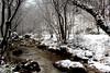 -  primaneve  - (IVAN 63) Tags: winter snow val trompia valle dinzino brescia italy lombardia prealpi valdinzino valtrompia