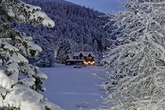 Twilight III (acipinarli) Tags: snow trees cold bolu gölcük house winter ice frozen lake night twilight lights cabin