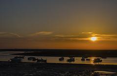 Algarve Sunset (ORIONSM) Tags: portugal algarve faro sunset silhouttes boats golden sky olympus omdem10markii