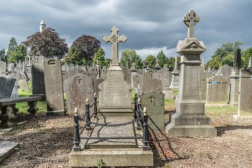 GLASNEVIN CEMETERY [MY FIRST DAY USING THE NEW SONY A7RMkII] REF-107408