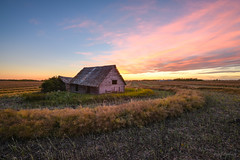 Cut and Dry (WherezJeff) Tags: ca pink sunset canada abandoned field cut harvest alberta harmony reds derelict sheds sturgeoncounty distagon1528zf
