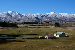 Kakanui Mountains, Maniototo (flyingkiwigirl) Tags: mountains cemetery river board central pass historic otago diggings charges maniototo kakanui danseys kyeburn