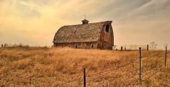 LEAN ON ME (Irene2727) Tags: wood sky nature clouds barn fence landscape countryside lowangle woodenbarn
