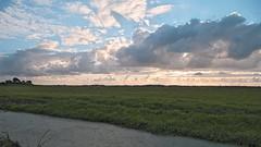 Busch en Dam (Kronemans) Tags: nederland noordholland uitgeest krommenie buschendam
