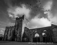 Tintern Abbey. (Tony Brierton) Tags: castle monument historic tinternabbey hookhead saltmills cowexfordruins