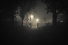 Prt(s) pour Halloween ? (Gilderic Photography) Tags: street mist halloween fog mystery night lumix lights gate belgium belgique belgie chartreuse panasonic lumiere portal rue liege brouillard brume gilderic lx3 dmclx3