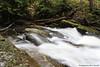 IMG_2157 (Mark Bischoff) Tags: park trees wild mountain forest river paradise hiking mount trail national rainier wilderness wonderland range cascade