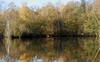 Reflections (2) (yvonnepay615) Tags: uk autumn lake nature reflections lumix norfolk panasonic 45mm eastanglia coth gh4