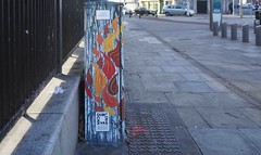 CITY FOX BY BRIDGET NI DHUINN BELCHER [BOLTON STREET]-110285