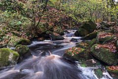 Coca Cola River (Gren269) Tags: november trees water leaves river sticks rocks colours smooth waterfalls foam gorge brook rays autumnal burbage padley 2015 burbagebrook padleygorge smoothwater autumnalcolours landscapesportfolio foamrays