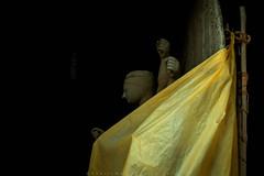 || Veil || (SouvikMetiaPhotography) Tags: shadow portrait india color face yellow studio nikon flickr veil outdoor mother idol sideview kolkata durga devine