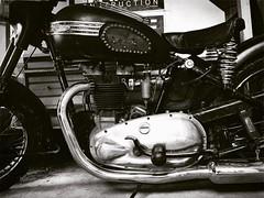 Bitchin '53 #triumph #5t #speedtwin #bobber (ashley.lowe) Tags: triumph 1953 bitchin speedtwin 5t bobber