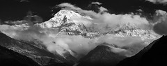 _C160837_40 (bl!kopener) Tags: nepal blackandwhite bw cloud mountain nature monochrome landscape dramatic conservation olympus area stitching annapurna himalayas omd 5x2 2015 m43 em10 mtw mft mountainpeak annapurnasouth f4056 hiunchuli landrung landruk mirrorless 80300mm 40150mmf4056 microfourthirds photographybay mzuiko rpr151129
