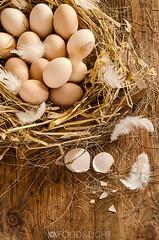 fresh eggs (Food Photography Studio) Tags: nest bright egg feather eggs unprocessed freshfood