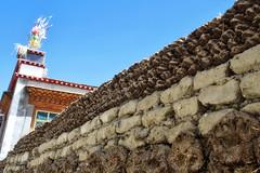 aR_TIBET_74 (Arnaud Rossocelo) Tags: tibet tibetan monk lhassa dalai lama potala stupa monastery temple buddha buddhism statue shigatse lake namtso yamdrok everest