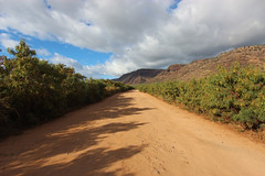 The Road to Polihale Beach (russ david) Tags: the road polihale beach state park kauai hawaii hi september 2016 sky cloud landscape jeep off ハワイ 風景
