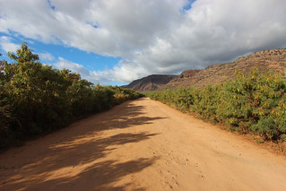 The Road to Polihale Beach