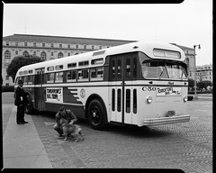 X2368 (market street railway) Tags: 1950 blackandwhitephotograph californiaca celluloseacetatenegative civiccenter civiccenterplaza dog grovestreet june15 june151950 larkinstreet mackbrandbus mackbulldogmascot marshallmoxomphotographer mcallisterstreet motorcoachbus munipuccollection polkstreet sfmtaphotoarchive sanfrancisco sanfranciscomunicipalrailwaymuni sanfranciscomunicipaltransporatationagency supremecourtofcalifornia tomorrowsbustodaysign xseries x2368 ca usa us