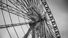 Paris (33) (maxime.piednoir) Tags: paris france concorde bw black white wheel canon eos 6d 50mm