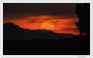 Anochecer neblinoso....(Carcastillo)  **Navarra**