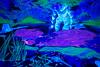 Ophelia (jannepaint) Tags: lightpainting lightdrawing longexposure johnmillais ophelia forcedperspective