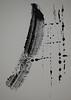 DSC_0974 (RobertPlojetz) Tags: plojetz robert robertplojetz print printmaking monoprint art paper acrylic abstract