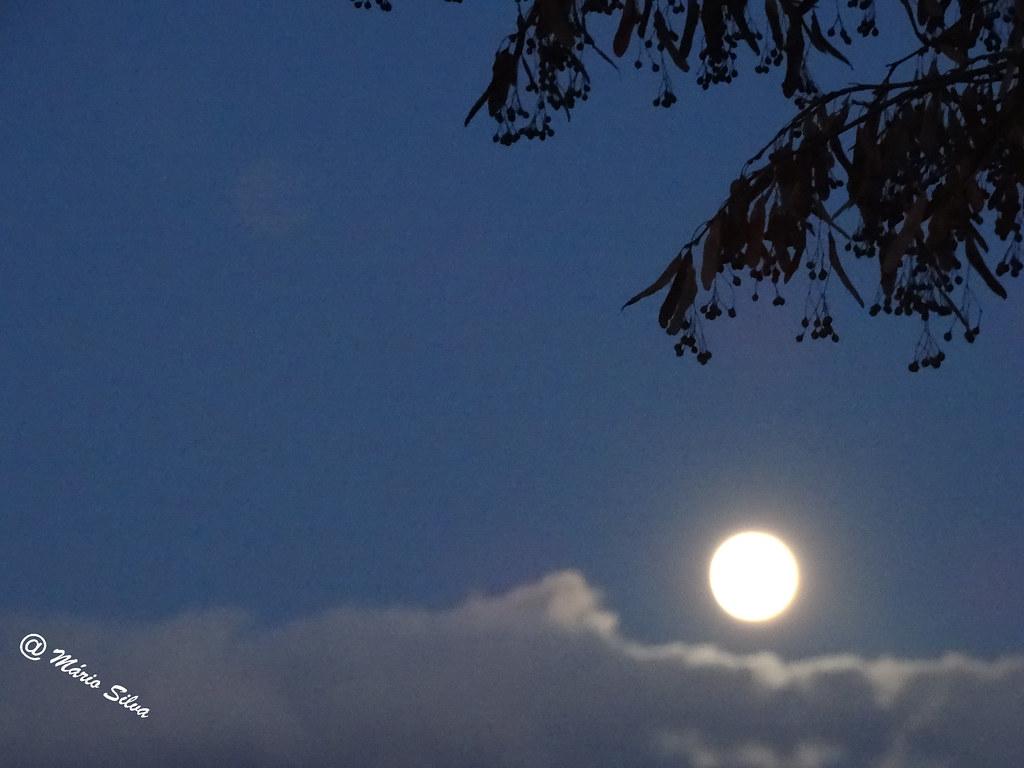 Águas Frias (Chaves) - ... a lua em pleno dia ...