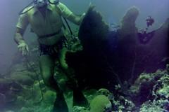 n0005.11 (avaragado) Tags: barbados coralreefclub fd197504 fd197604 fd197905 n0005 tonysmith