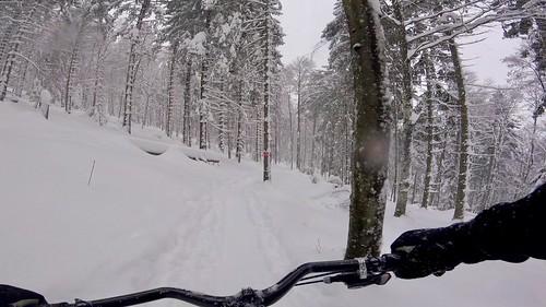 Today's Tricky Trail
