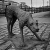 Ireland Potato Famine Memorial Statues (RedPlanetClaire) Tags: ireland dublin potato famine memorial statues sculptures hunger starvation people sad disaster dog