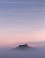Top of the World (Sarah_Brooks) Tags: inversion minimal landscape pastelsky predawn daw sunrise pink hilltop hill somerset
