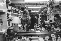 Polleria nel Sestiere della Maddalena - Superbi. I genovesi e la loro città (Tiziano Caviglia) Tags: genova liguria streetphotography superbiigenovesielalorocittà poulterer polleria shop negozio mestieri crafts sestieredellamaddalena anticapolleriaannaesergio people persone genoa