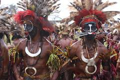 IMG_8771 (stevefenech) Tags: png papau new guinea stephen fenech indigenous goroka show