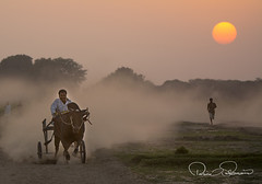 Last Race (TARIQ HAMEED SULEMANI) Tags: sulemani supershot sensational summer sunset jahanian concordians culture colors tariq tourism trekking tariqhameedsulemani travel theunforgettablepictures theperfectphotographer s