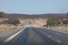 447A8450 (nathankdavis) Tags: nullarbor southaustralia westernaustralia roadtrip road house australia bight ocean nature seascape explore plains desert landscape perth melbourne highway kangaroo vic wa travel open
