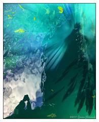 Reflecting With the Fishes (GAPHIKER) Tags: homosassa homosassasprings state park water spring fish reflection doubleselfiereflection selfie art iphone ellieschiller florida doppelgänger