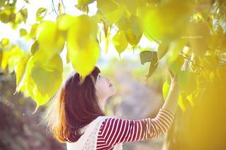 Autumn J...